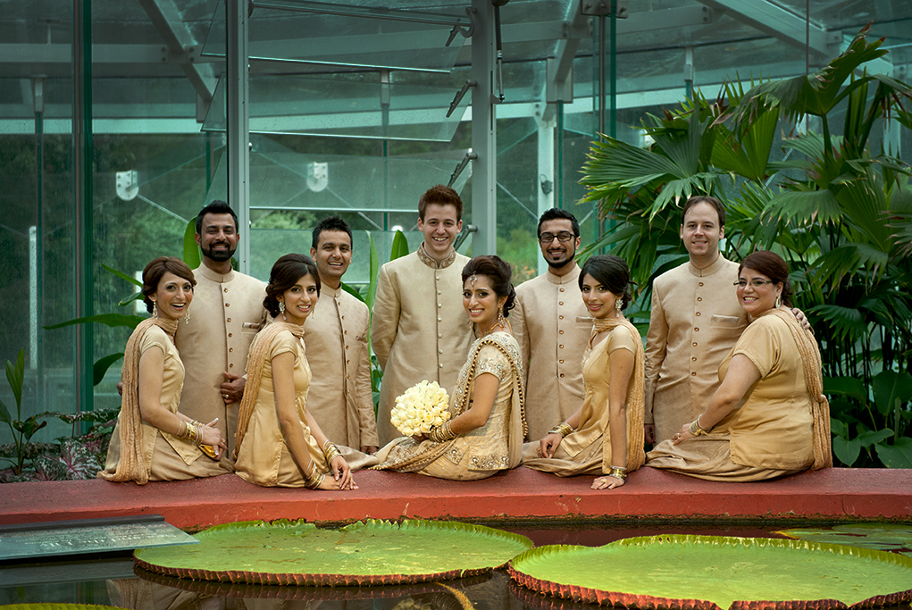 water lily, palm trees, Adelaide, city, photographer, South Australia, Indian, wedding, traditional, gold, embellishments, sequins, bride, groom , bridal party, groomsmen, bridesmaids, white roses, bouquet, sari, bangles, earrings, necklace, headpiece