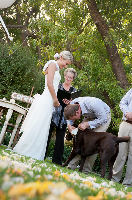 bride, celebrant, groom, dog, Labrador, trees, outdoors, ceremony, South Australia, rural, country, blue shirt, pants, dress, wedding, love vows, wood, rose petals, yellow, white, photographer, outback, photography