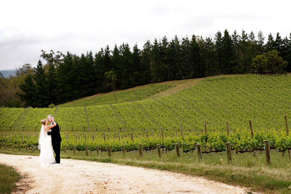 Adelaide, hills, The Lane, Vineyard, beautiful, Australia, bride, groom, wine, trees, photography, greenery, nature, black, suit, white, shirt, dress, veil, hair, up-do, style, love, veil, wood