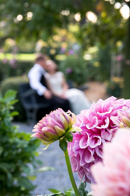 Botanic Gardens beautiful romantic photography Adelaide happy newlyweds photographer pink flowers wedding love groom bride