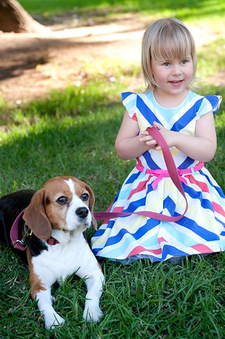 beaglier, beagle, park, dog, pet, nature, location, photography, kids, children, girl, cute, rainbow dress