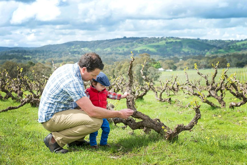 beautiful, scenic, Adelaide, South Australia, location photography, photographer, nature, vineyards, hills, kids, boy, hat, red vest, blue pants, checkers