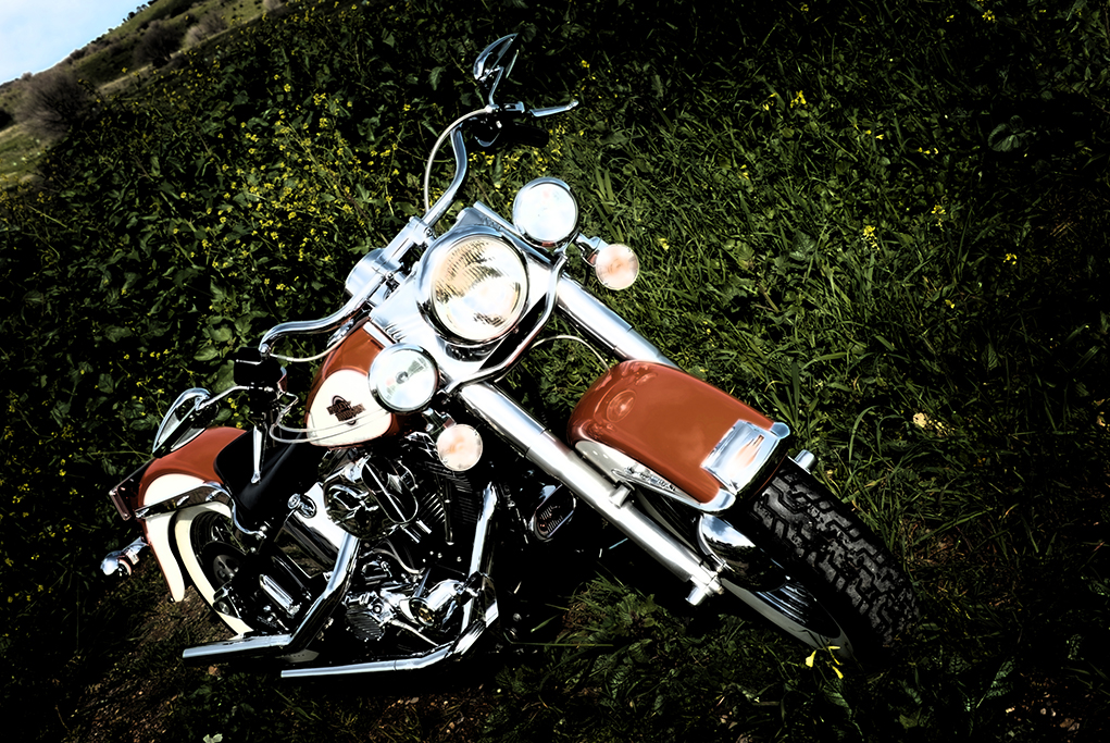 Harley Davidson, motorbike, location photography, Adelaide, South Australia, Nature, beautiful, country, scenery, photographer
