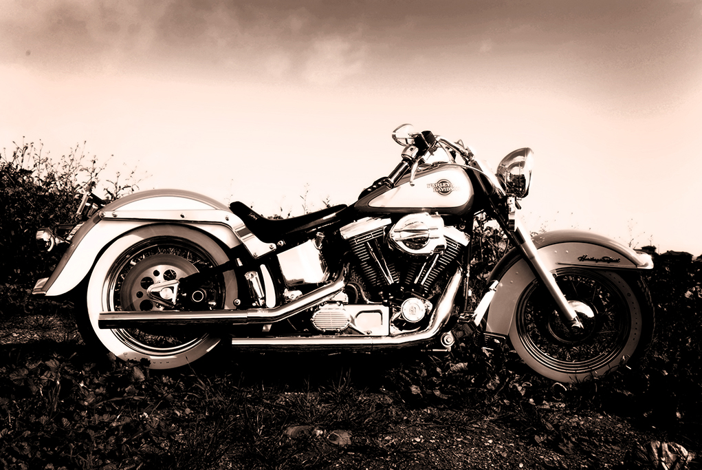 Motorbike, Adelaide, South Australia, sepia, photography, Harley Davidson, beautiful, location photo-shoot, bike, nature, country
