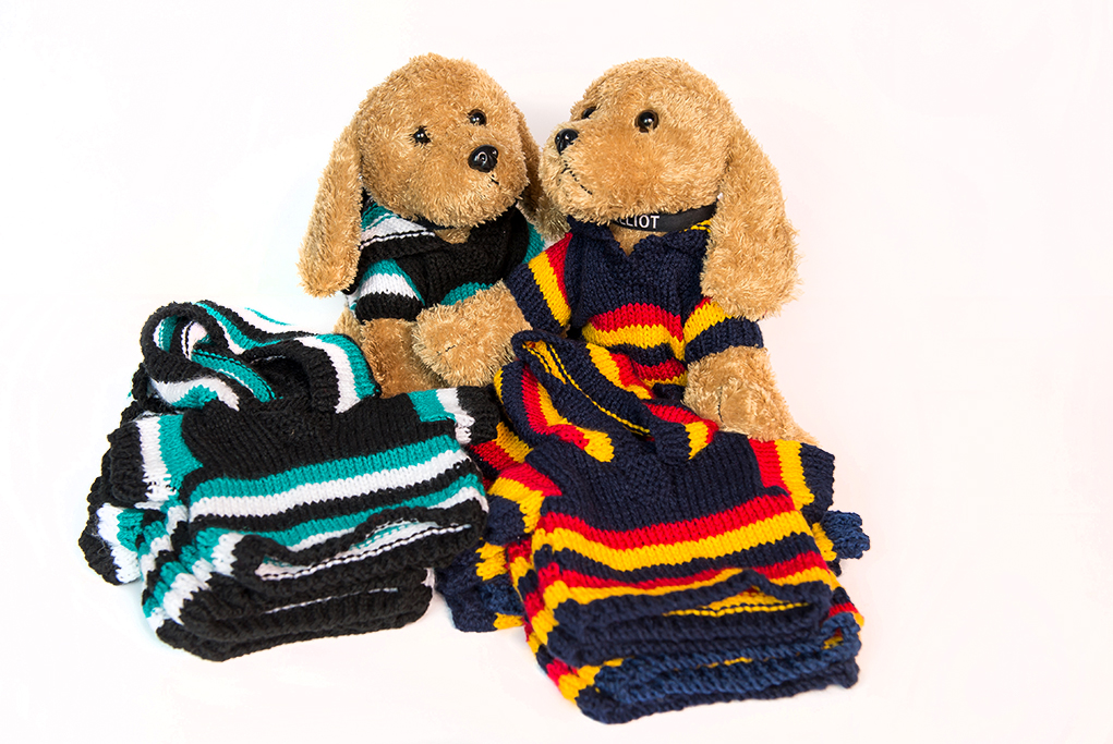 Image of two toy dogs wearing a port power Guernsey and a crows football Guernsey, mascots for the Childhood Cancer Association, Elliot the toy mascot, corporate promotional image , wearing knitted apparel for sale, instagram and social media face book images