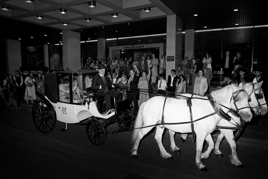 horse, carriage, happy, bridal party, guests, family, friends, black and white, Adelaide, Hilton, Reception, traditional, Indian, South Australia, wedding, photographer, top-hat, photography